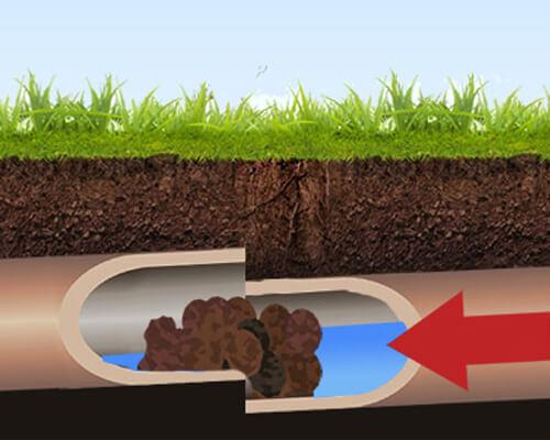 Pojava korenja u kanalizacionim cevima - servis vagner (1)